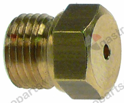 100.490, gas injector thread M10x1 WS 12 bore ø 2,7mm