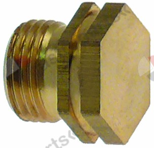 100.621, gas injector thread M11x1 WS 13 bore custom-made