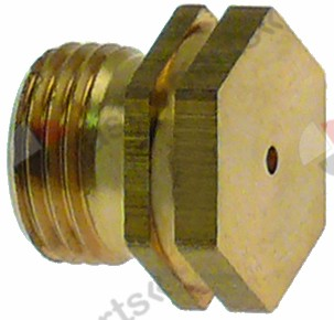 100.681, gas injector thread M11x1 WS 13 bore ø 1,1mm