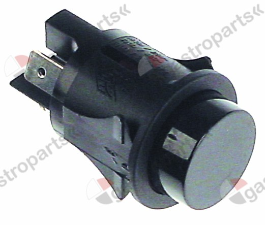 101.025, momentary push switch mounting ø 25mm black 2NO 250V 16A connection male faston 6.3mm