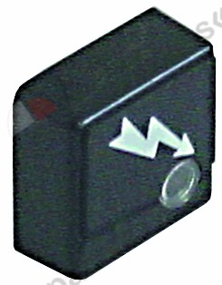 345.660, push button size 23x23mm black flash with lens