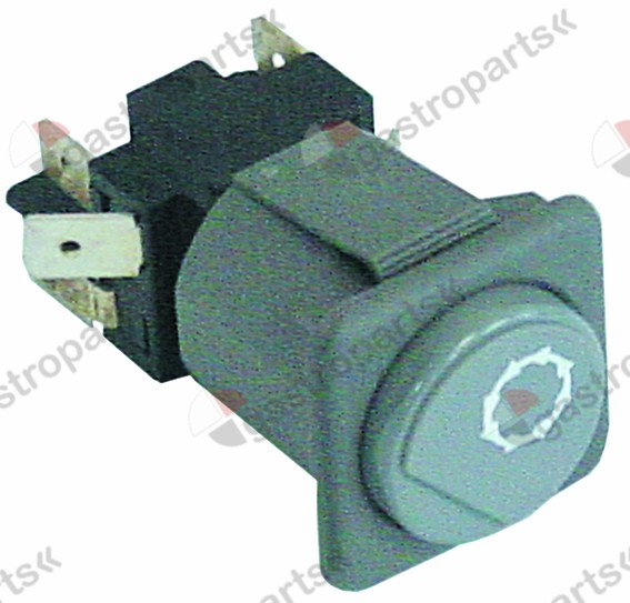 345.846, momentary push switch mounting measurements 28.5x28.5mm grey 2CO 250V