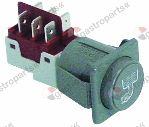 345.941, momentary push switch mounting measurements 28.5x28.5mm grey 2CO 250V