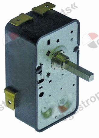 350.028, timer G 2-pole operation time 15min impulse mechanical 2NO at 250V 16A