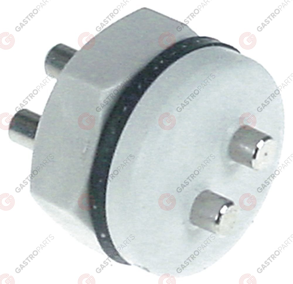 361.579, Replaced by 361245 / 501289 / 501290 / conductivity probe mounting ø 17mm