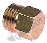 417.323, blind screw connection thread M10x1 WS 10 H 12mm brass for heating element