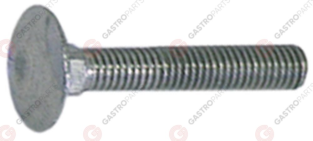 560.020, carriage bolts thread M5 5x30