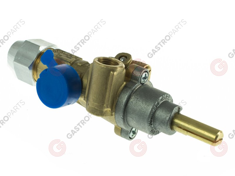 RM843195500, Gas tap